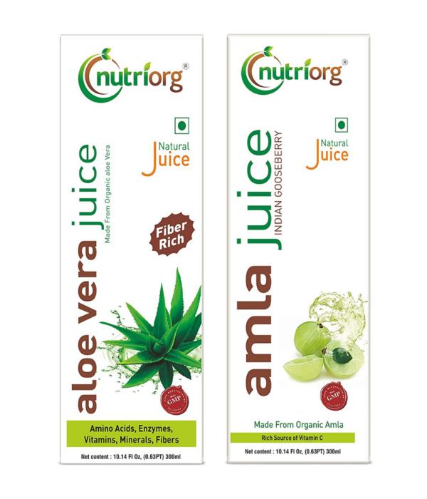 Nutriorg Amla & Aloe Vera Juice - 600 Ml (Pack of 2 - 300 each)   Organically Grown  Immunity Booster   Detoxification